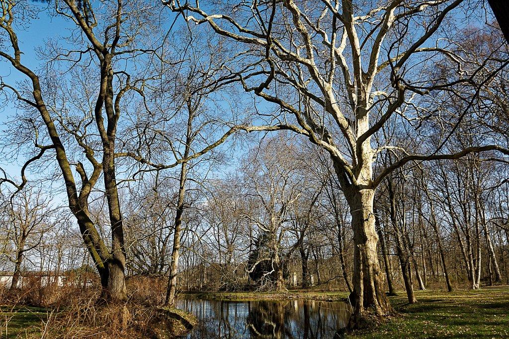 Park Knauthain
